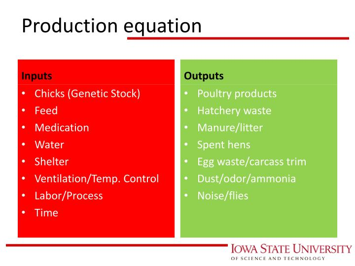 Production equation