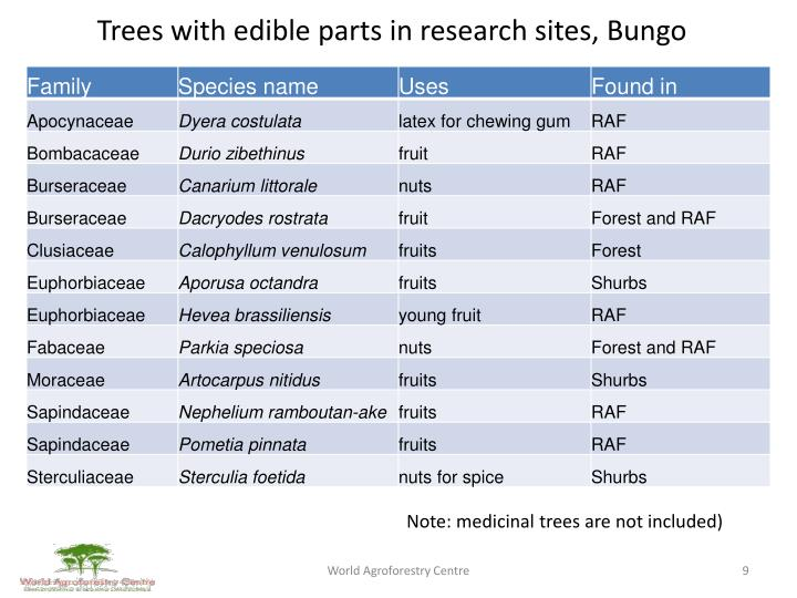 Trees with edible parts in research sites,
