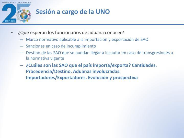 Sesión a cargo de la UNO
