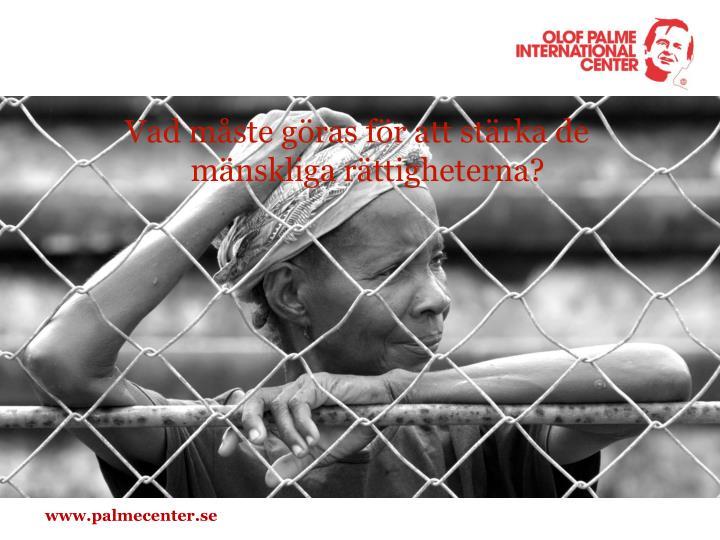 Vad måste göras för att stärka de mänskliga rättigheterna?
