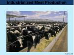 industrialized meat production