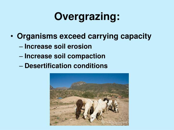 Overgrazing:
