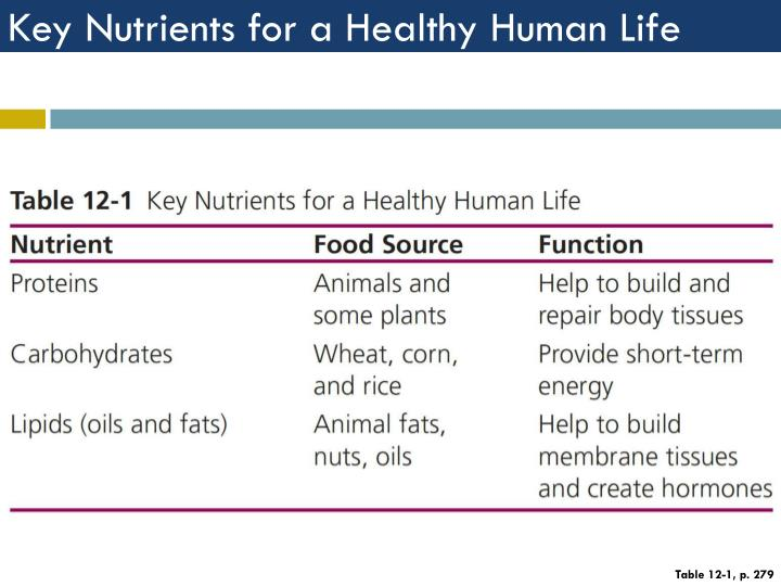 Key Nutrients for a Healthy Human Life