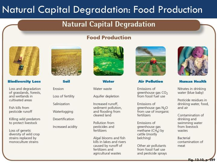 Natural Capital Degradation: Food Production