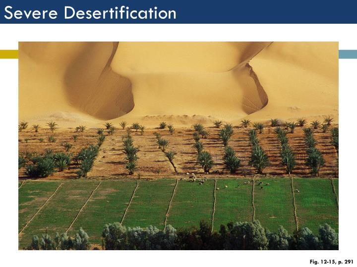 Severe Desertification