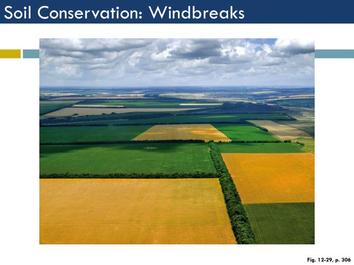 Soil Conservation: Windbreaks