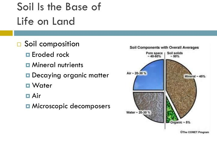Soil Is the Base of