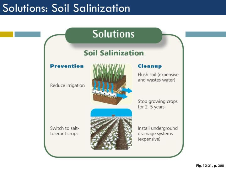 Solutions: Soil Salinization