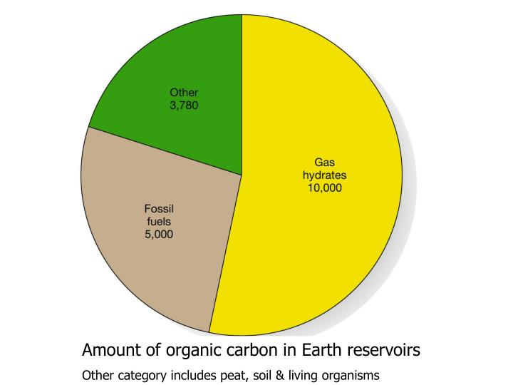 Amount of organic carbon in Earth reservoirs
