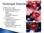 technique overview7
