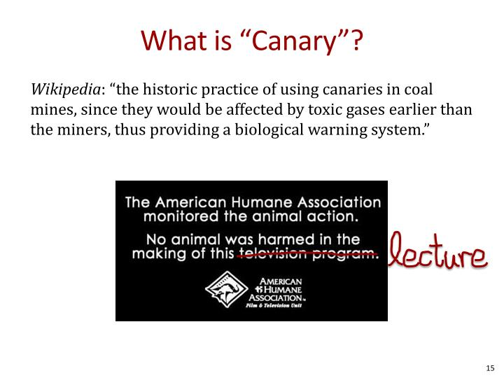 "What is ""Canary""?"