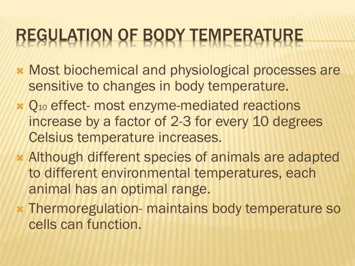 Most biochemical and physiological processes are sensitive to changes in body temperature.