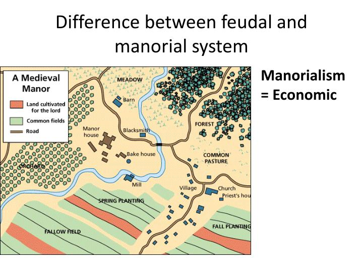 Difference between feudal and manorial system1