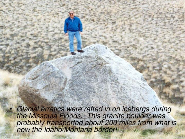 Glacial erratics were rafted in on icebergs during the Missoula Floods.  This granite boulder was probably transported about 200 miles from what is now the Idaho/Montana border!