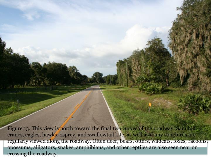 Figure 13. This view is north toward the final two curves of the roadway.