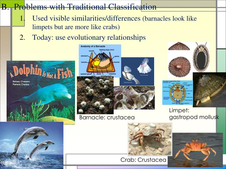 Problems with Traditional Classification