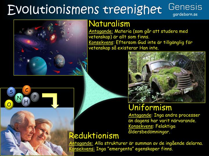 Evolutionismens treenighet