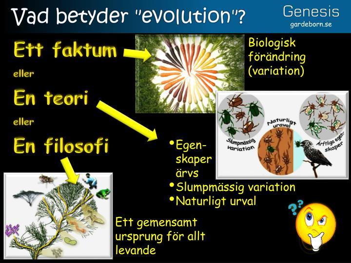 "Vad betyder ""evolution""?"