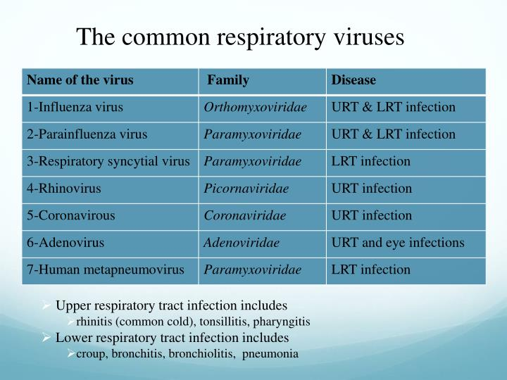 The common respiratory