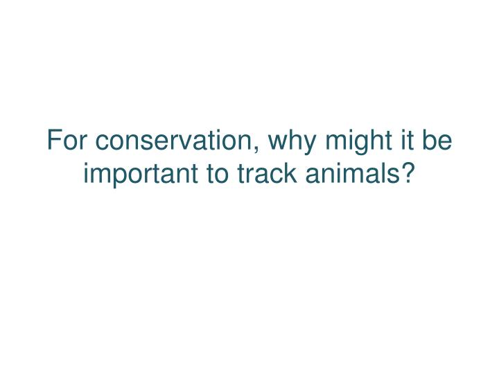 For conservation, why might it be important to track animals?