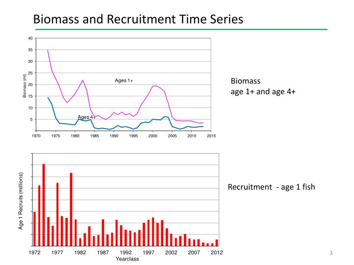 Biomass and Recruitment Time Series