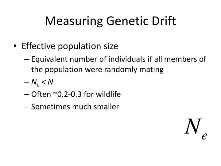 Measuring Genetic Drift