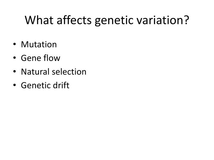 What affects genetic variation?