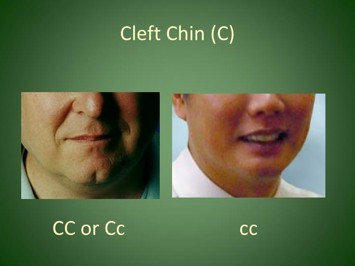 Cleft Chin (C)