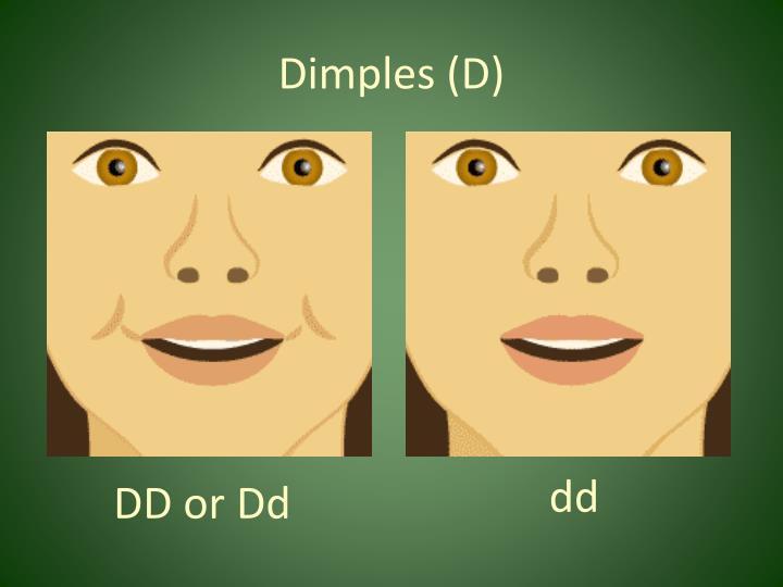Dimples (D)
