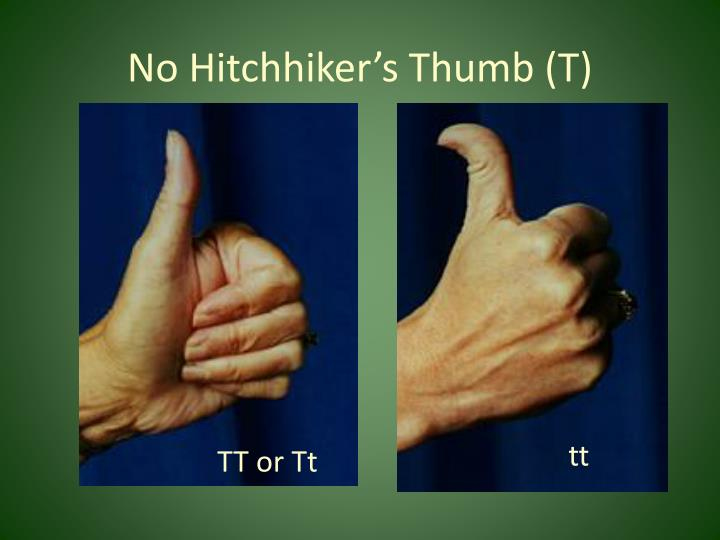 No Hitchhiker's Thumb (T)