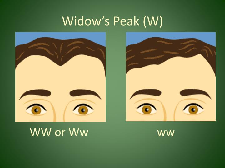 Widow's Peak (W)
