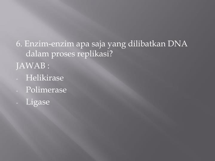 6. Enzim-enzim apa saja yang dilibatkan DNA dalam proses replikasi?
