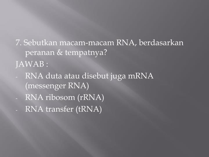 7. Sebutkan macam-macam RNA, berdasarkan peranan & tempatnya?