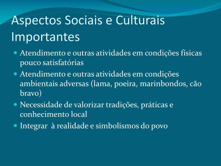 Aspectos Sociais e Culturais Importantes