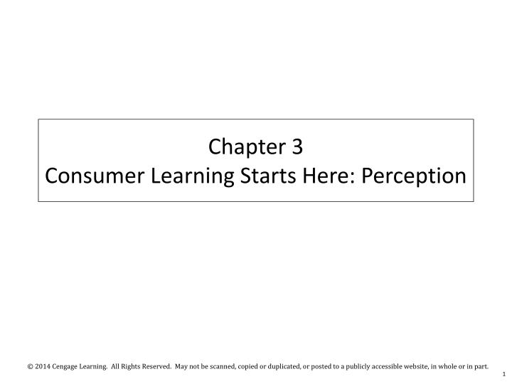 Chapter 3 consumer learning starts here perception
