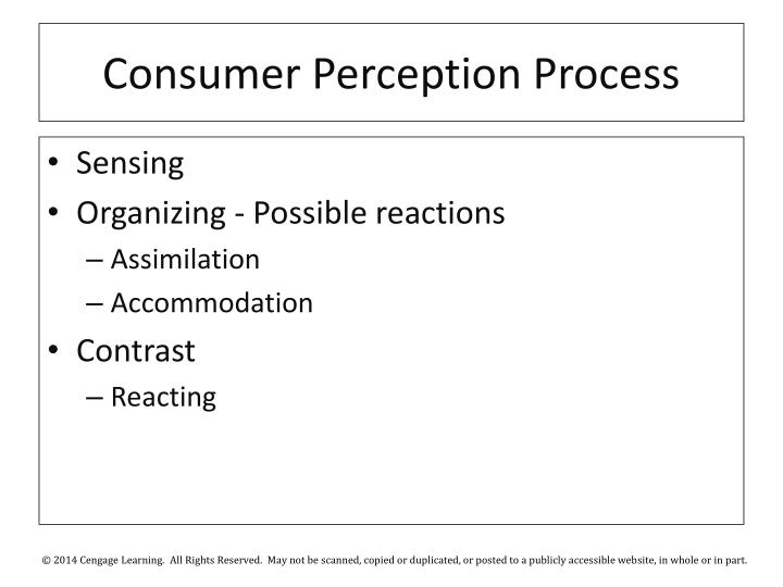 Consumer Perception Process