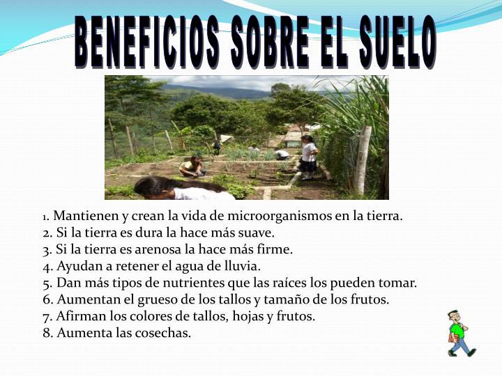 BENEFICIOS SOBRE EL SUELO