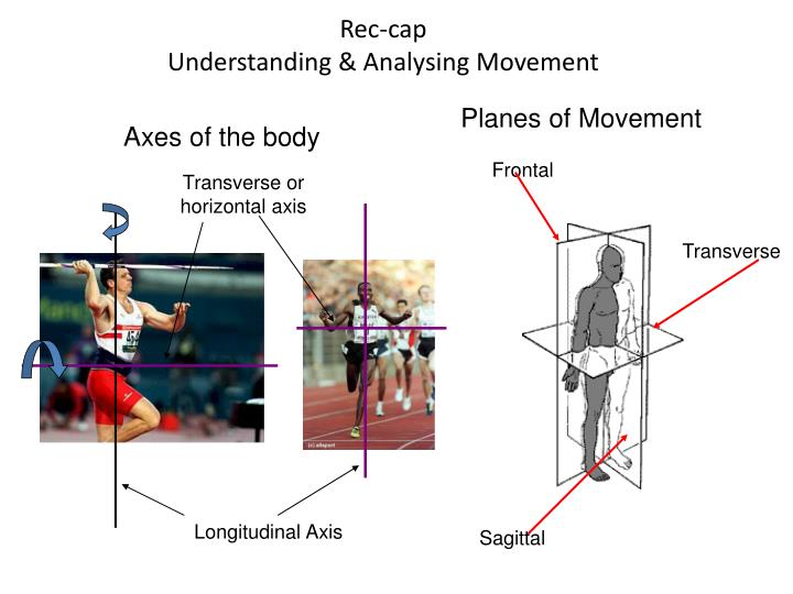 Rec cap understanding analysing movement