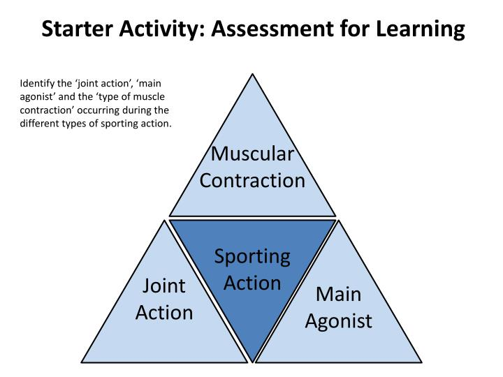 Starter Activity: Assessment for Learning