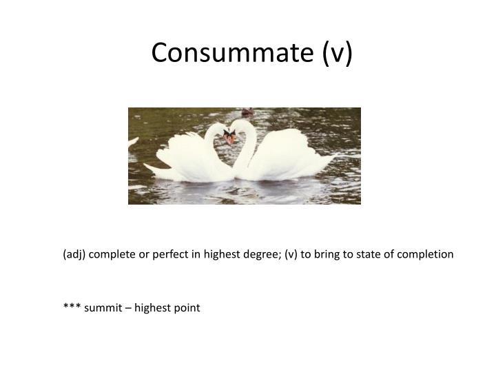 Consummate (v)