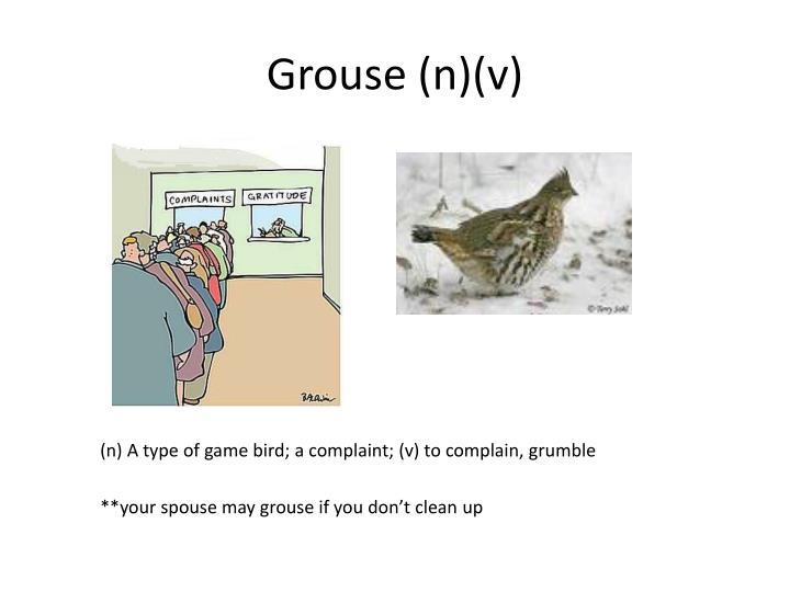 Grouse (n)(v)