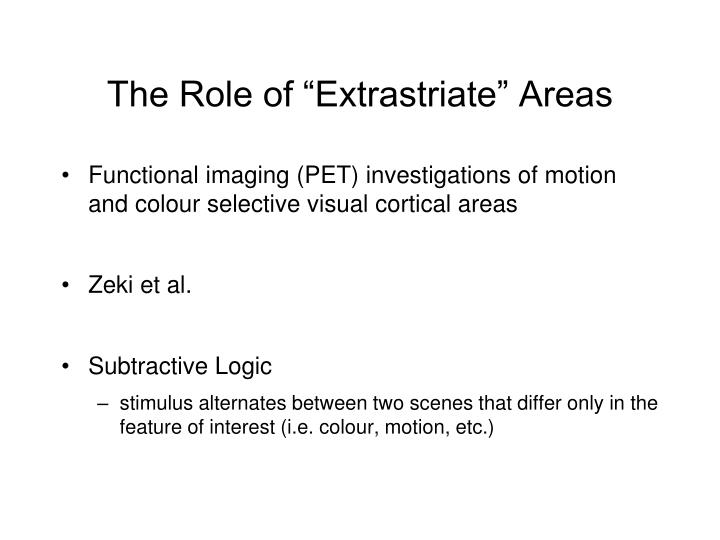 "The Role of ""Extrastriate"" Areas"