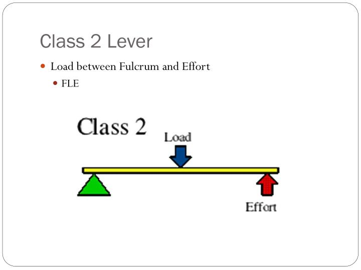 Class 2 Lever