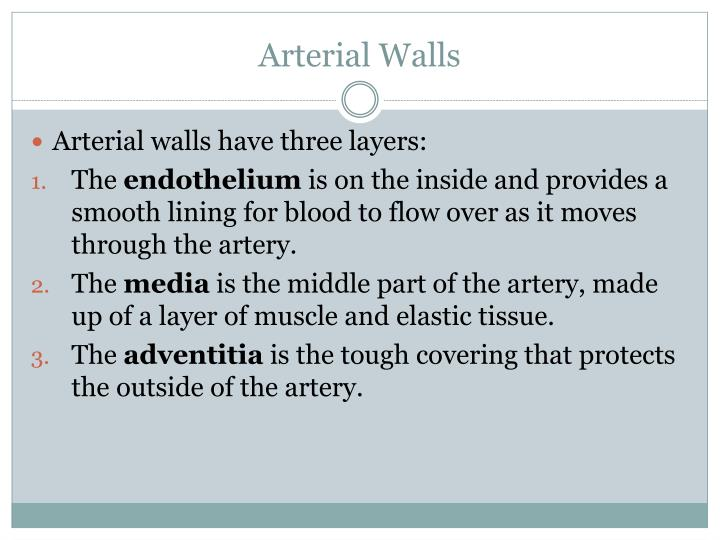 Arterial Walls