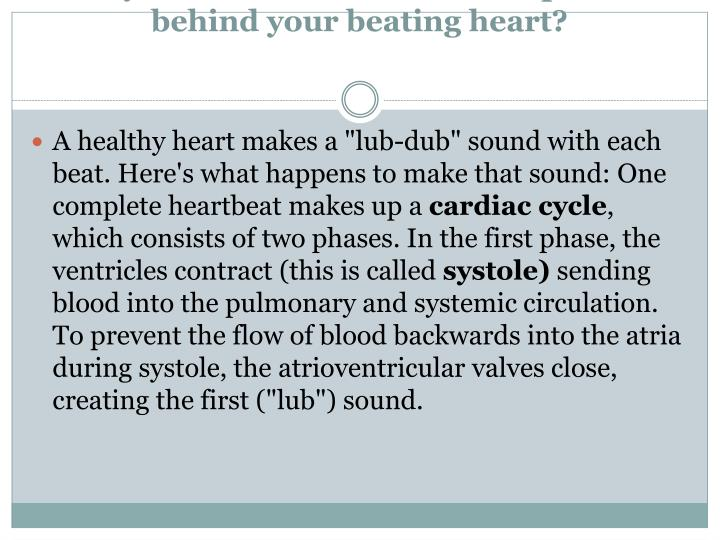 Did you ever wonder about the process behind your beating heart?