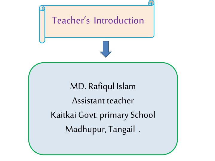 Teacher's  Introduction