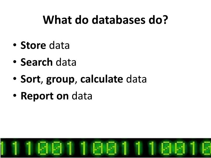 What do databases do