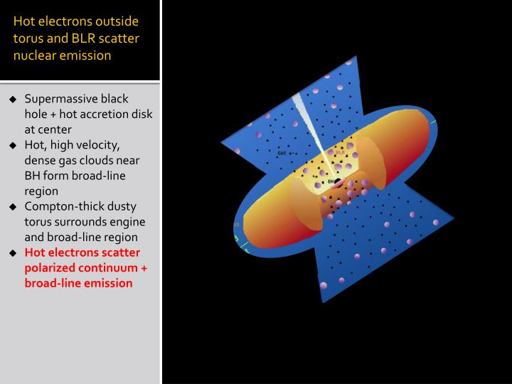Hot electrons outside torus and BLR scatter nuclear emission