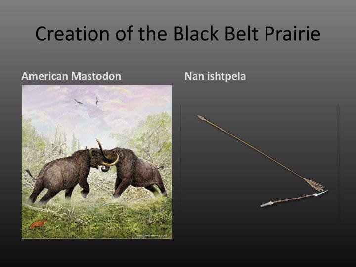 Creation of the Black Belt Prairie