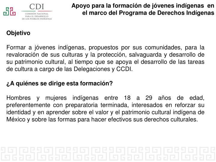 Apoyo para la formación de jóvenes indígenas  en el marco del Programa de Derechos Indígenas